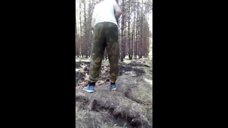 хуи из леса