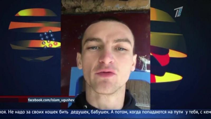 Алматинец опубликовал на своей странице фотографии отрезанных кошачьих голов