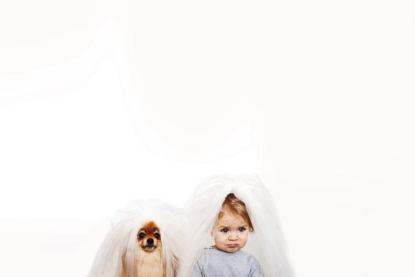 Милейшая фотосерия от Ольги Руденькой, фотографа из Волгограда. Несколько лет назад супруг подарил ей немецкого миниатюрного шпица, а вскоре - дочку Еву. В фотопроекте совместные фотографии двух