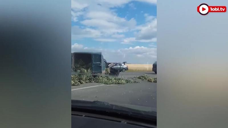 трассу под Магнитогорском завалило вениками после ДТП