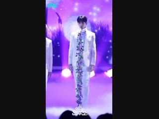 [예능연구소 직캠] ASTRO - Bloom (CHAEUNWOO), 아스트로 - 피어나 (차은우) Show Music core 20190119