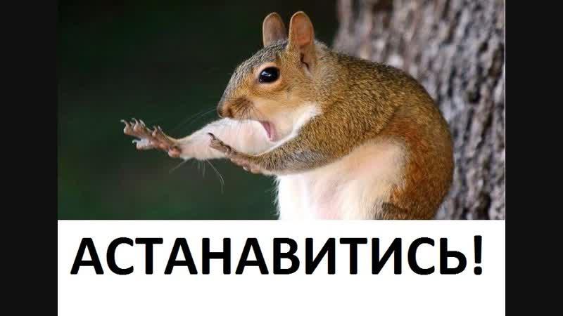Одноклассники, астанавитись!