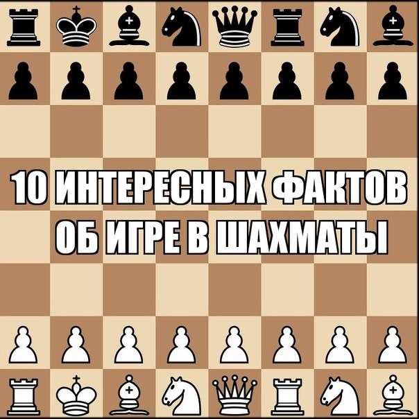 10 интересных фактов об игре в шахматы