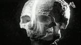 Cannibal corpse ''Sentenced to burn''
