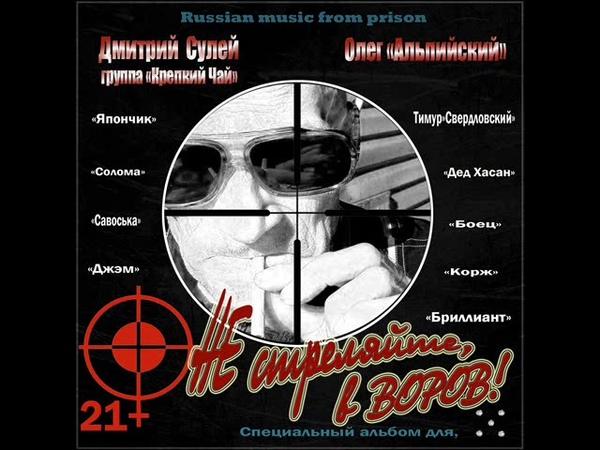 Цируль Дмитрий Сулей