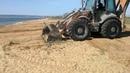 На Золотом пляже Феодосии уничтожают дюны, на которых произрастают краснокнижные растения. Крым.