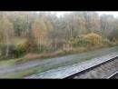 Снято из поезда 104 Брест - Новосибирск, Тюменская область.