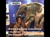 Жанна Бадоева напомнила якутянам о выпуске «Орла и решки» в Якутске