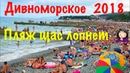 Дивноморское 2018 Пляжи море Обстановка сегодня
