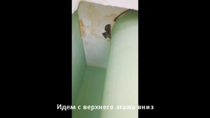 Ремонт подъезда №1 дома 22 по ул. Комсомольской г. Ногинск по программе Губернатора МО Мой Подъезд