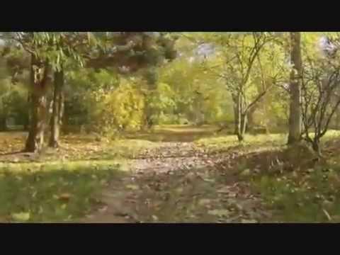 Krystyna Giżowska - Jesień jest piękna
