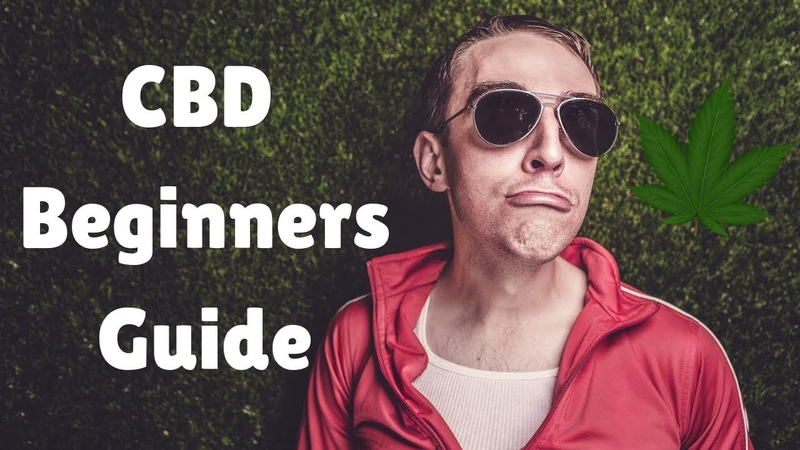 How Much CBD Should I Take Beginners Guide