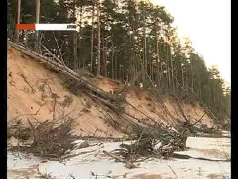 За и против осушения Рыбинского водохранилища