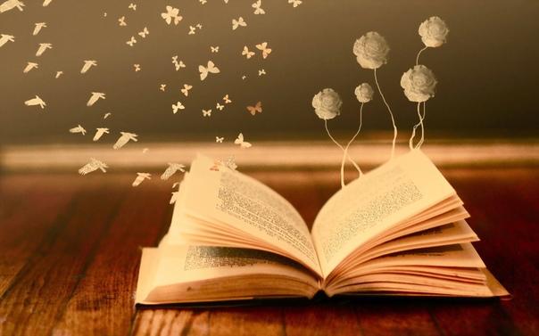 Топ-10 отличных книг, объемом менее 300 страниц 1.35 кило надежды Анна Гавальда Это поэтичная притча о главном: о выборе жизненного пути, о силе любви и преданности. О семье. О том, что мечты