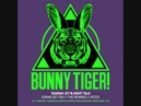 Sharam Jey Night Talk - Gonna Get You (Teenage Mutants Purple Disco Machine Remix) - BT031