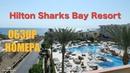 Номер Отеля Hilton Sharks Bay Resort 4*. Египет, Шарм-Ель-Шейх.