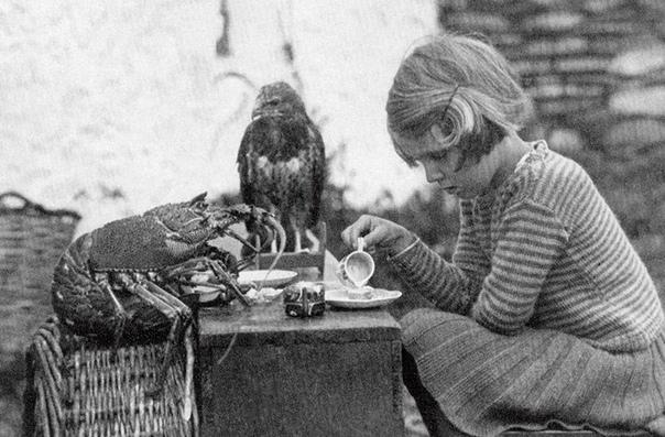 На этом снимке 1938 года запечатлена Энн Локли, пьющая чай .. с птенцом ястреба и шипастым лобстером. Энн жила вместе с родителями на острове Скокхольм в Великобритании, близ берегов Уэльса. Ее