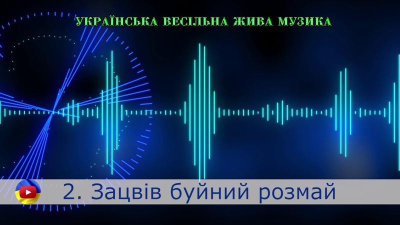 ЗБІРКА ВЕСіЛЬНИХ ПІСЕНЬ 2 Живий запис з весілля. Українські весільні пісні