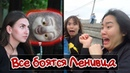 Все боятся Ленивца ПРАНК. Реакция людей на ленивца из Зверополиса