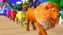 Los animales de granja y sus crías se transforman en animales salvajes en la fuente Episodio 2
