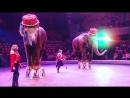 Итальянский Цирк Слоны и Тигры Нижний Тагил