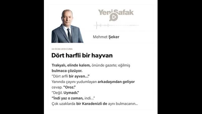 Mehmet Şeker Dört harfli bir hayvan 04 01 2019