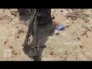 бойцы ансаралла взяли позиции свиней саудии и уничтожили и ранели свиней провинция асир бывшие земли йемена а так саудии