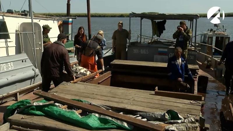 Астраханские пограничники пристально следят за рыбаками промысловых предприятий