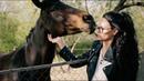Верховая езда без насилия Зачем нужна стерилизация животных Что такое веган Ksusha Krasivchik
