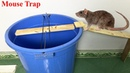 Mouse Trap / Rat Trap / Easy Saving Mouse / How to make A Mouse Trap With PVC Water PiPe