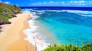 Música Relajante con Playas del Paraíso Antistress y Sonidos del Mar