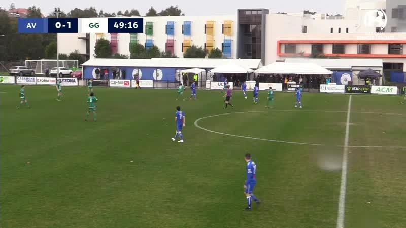 NPL Victoria U20 Round 19, Avondale FC vs Green Gully