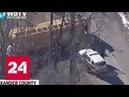 ДТП со школьным автобусом в Калифорнии: 13 человек пострадали - Россия 24