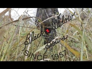 Насколько прочные луки от Черной Вдовы (Black Widow)