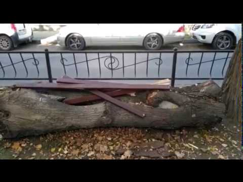 В Симферополе на бульваре Франко вандалы разворотили скамейки