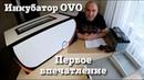 Инкубатор OVO-78 Первое впечатление