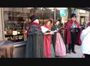 Певцы на улице Нью-Хейвена, США