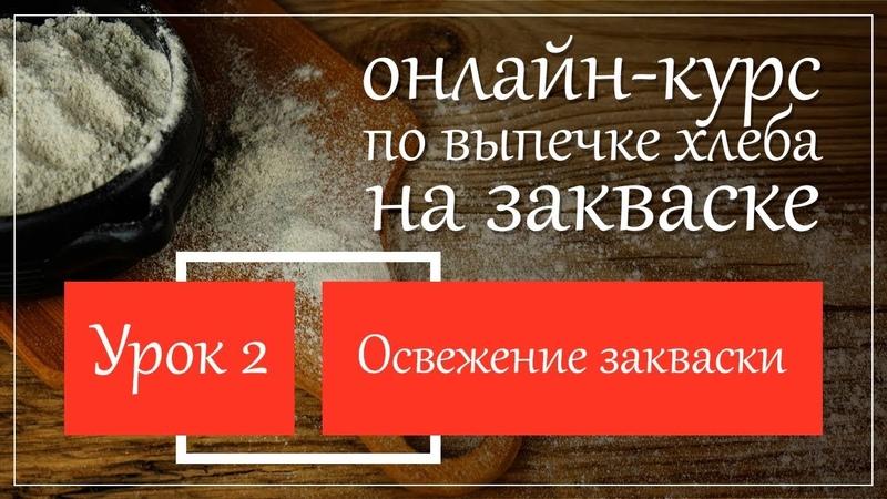 Доп.урок 3. Пшеничная зкваска после 2 освежения » Freewka.com - Смотреть онлайн в хорощем качестве