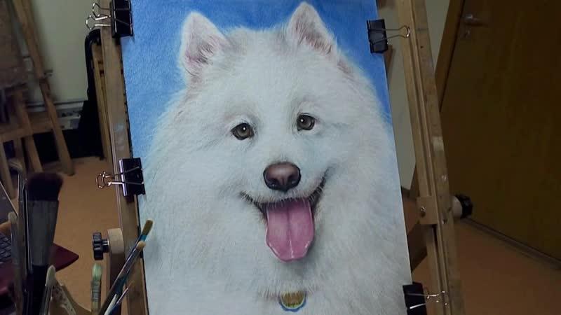 Как нарисовать собаку маслом на бумаге Сухая кисть StudioVikiART