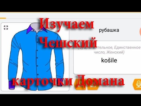 Чешский Язык, карточки Домана на Чешском 1