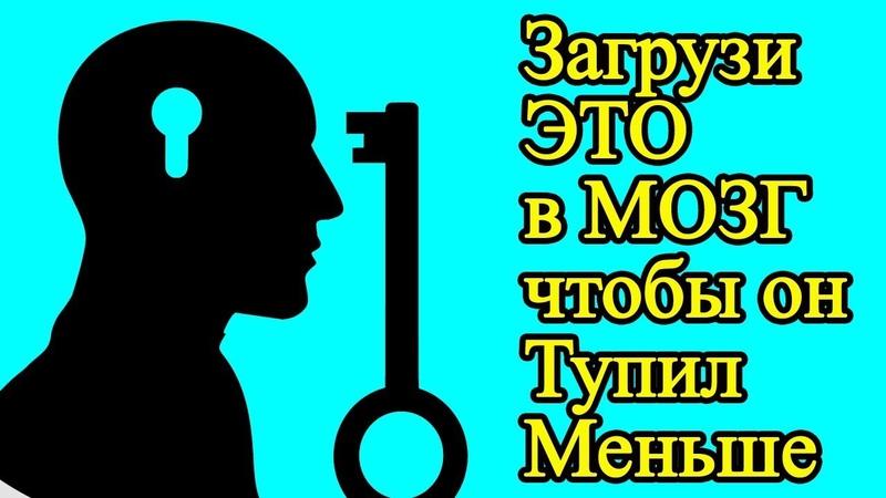 7 умных извилин чтобы мозг тупил поменьше – Узнай про 7 мудрых мыслей, они помогут стать успешным