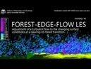 Large Eddy Simulation of a Forest Edge Flow
