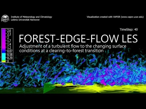 Large-Eddy Simulation of a Forest-Edge Flow
