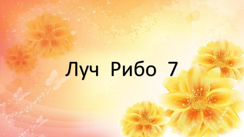 Учение Аркадия Петрова Древо Жизни Луч Рибо 7