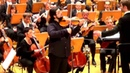 Paganini Sonata per la grand viola