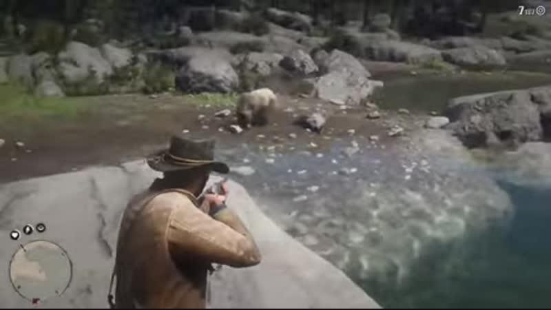 Кокаиновый медведь в дикой природе
