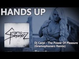 Dj Carpi - The Power Of Pleasure (Gramophonerz Remix)