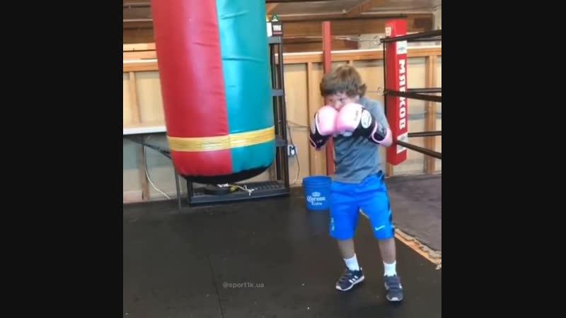 Младший Ломаченко набирает обороты! Растет новый чемпион!