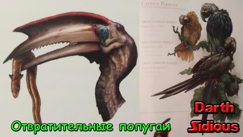 Жизнь Острова Черепа (The Life of Skull Island) - Отвратительные попугаи и другие птицы