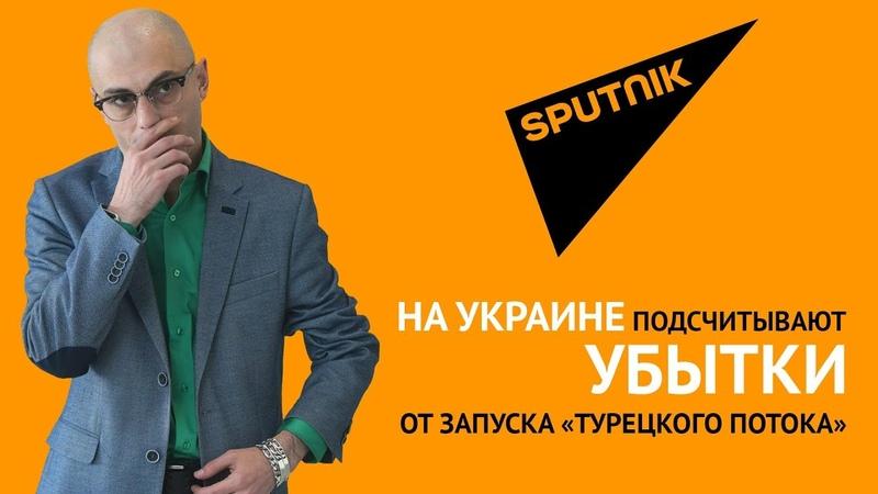 Гаспарян На Украине подсчитывают убытки от запуска «Турецкого потока»